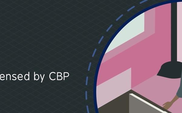 CBP Import Process