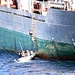 U.S. Navy Responds to North Korean Cargo Vessel Distress Call