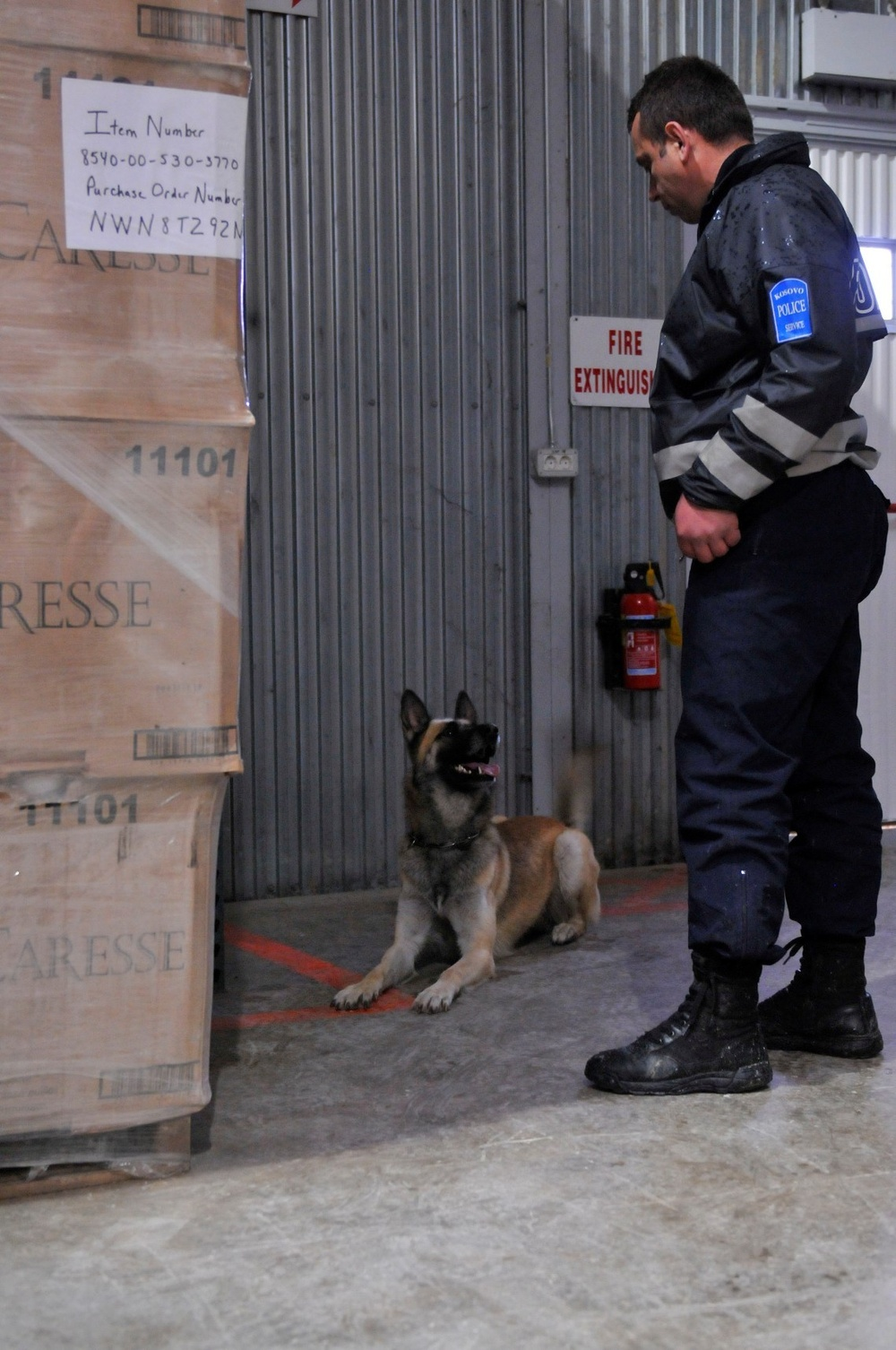Kosovo Police and KFOR dog handlers make a great team in joint training
