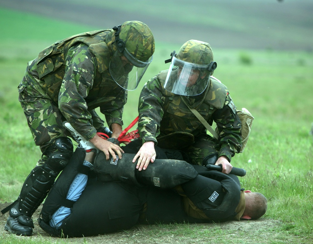 US, Romanian Marines Complete COIN Training Submitted