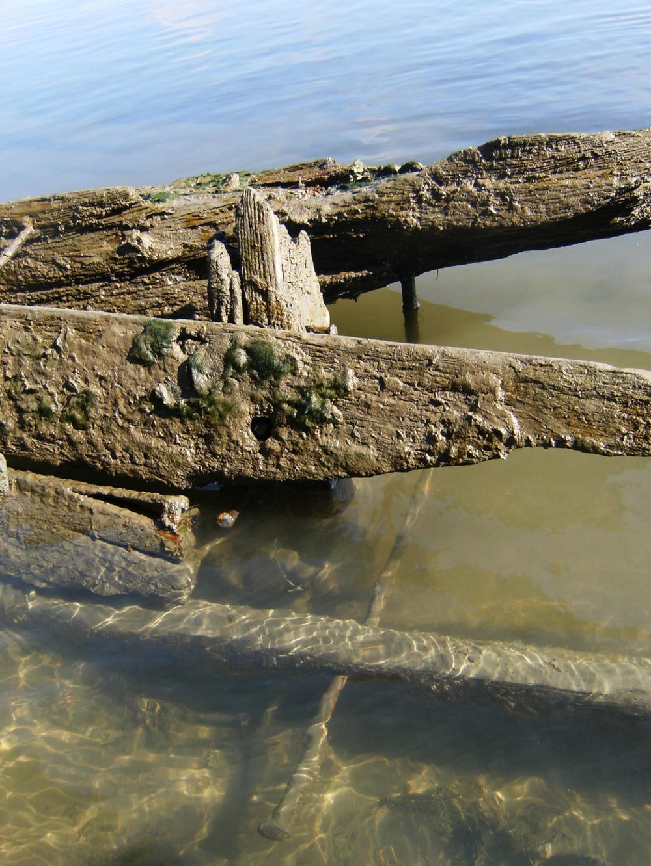 Exposed Clarksburg Ferry Wreckage.