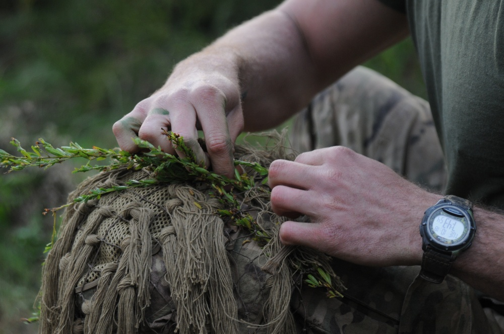 From PIGs to HOGs the Scout Sniper way
