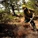 Colorado Waldo Canyon Fire