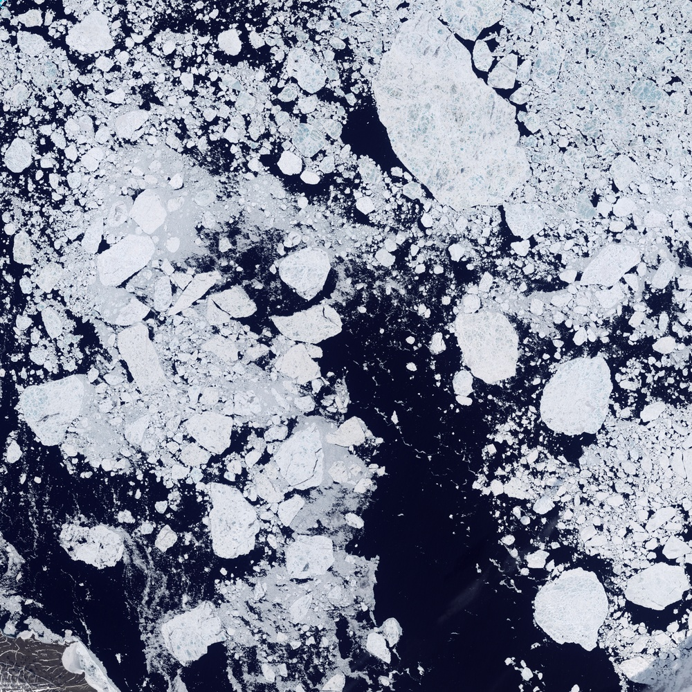 Detailed View of Arctic Sea Ice: Image of the Day