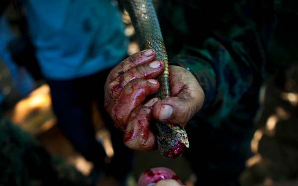 31st MEU learns jungle tricks from Thais