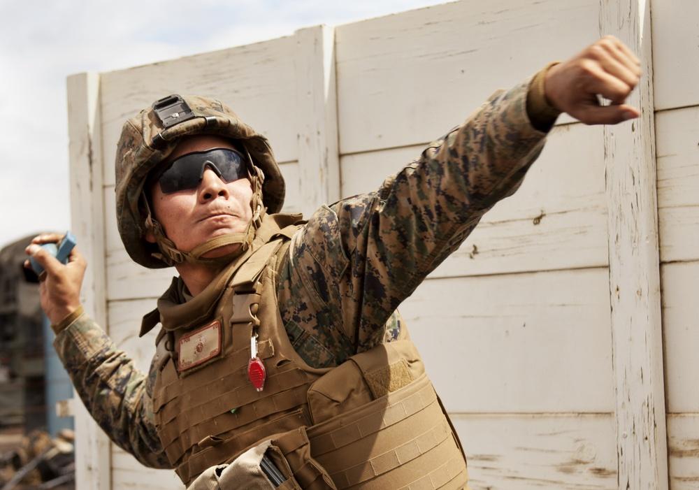 Artillery Marines conduct grenade range on big island