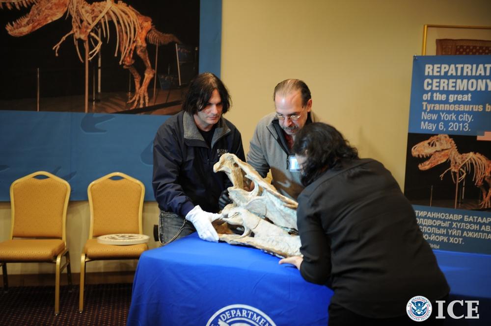 HSI returns dinosaur bones to Mongolia