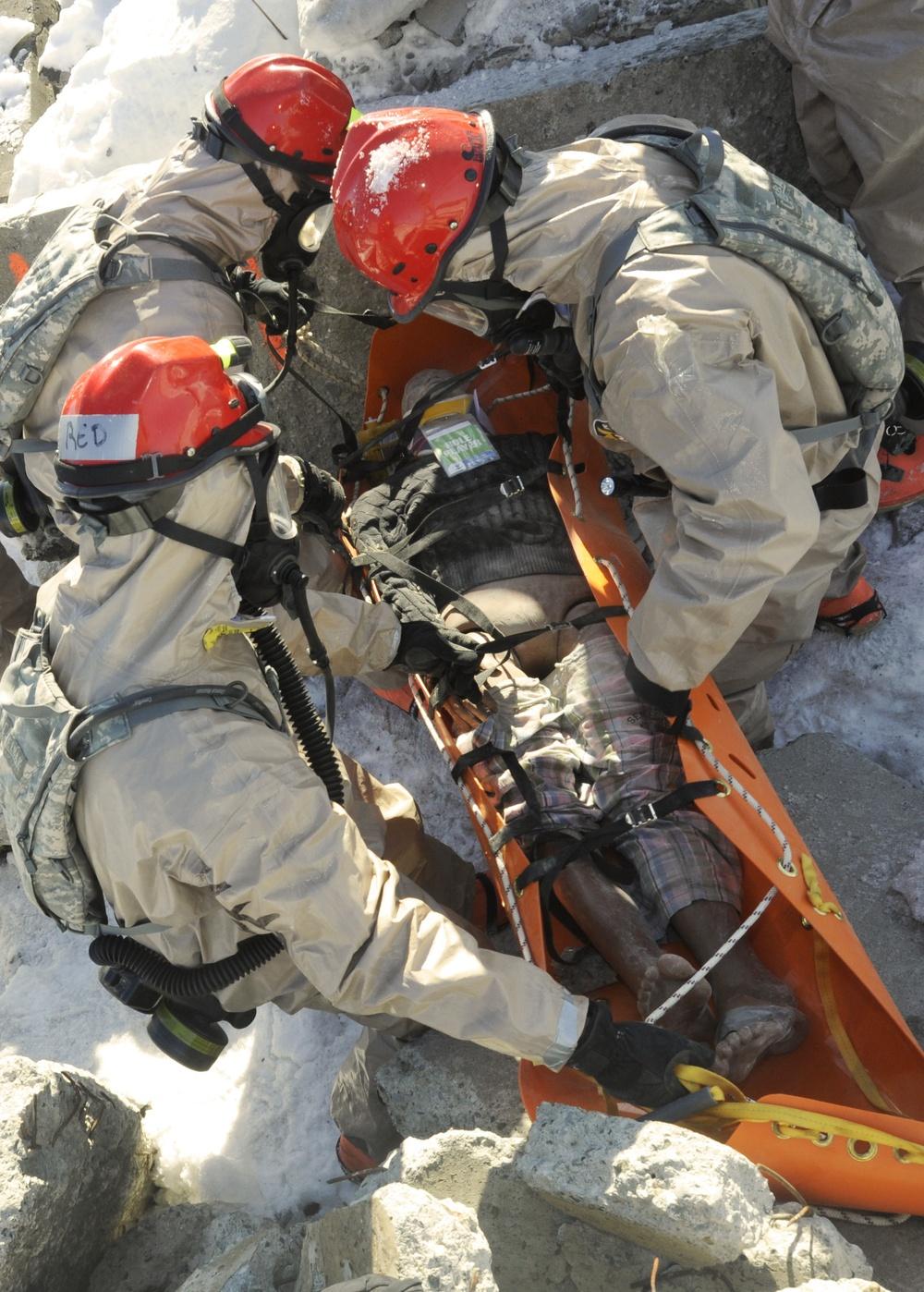 Vigilant Guard-Alaska 2014