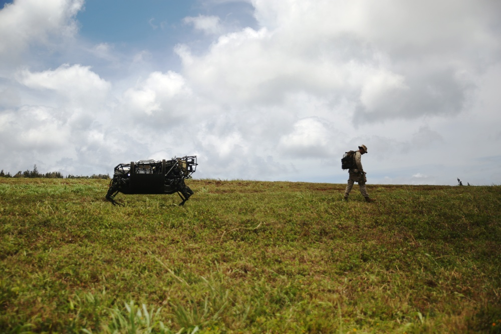 Meeting LS3: Marines experiment with military robotic