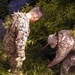 Marines, New Zealand Soldiers conduct  airdrops during Exercise Kiwi Koru 2014
