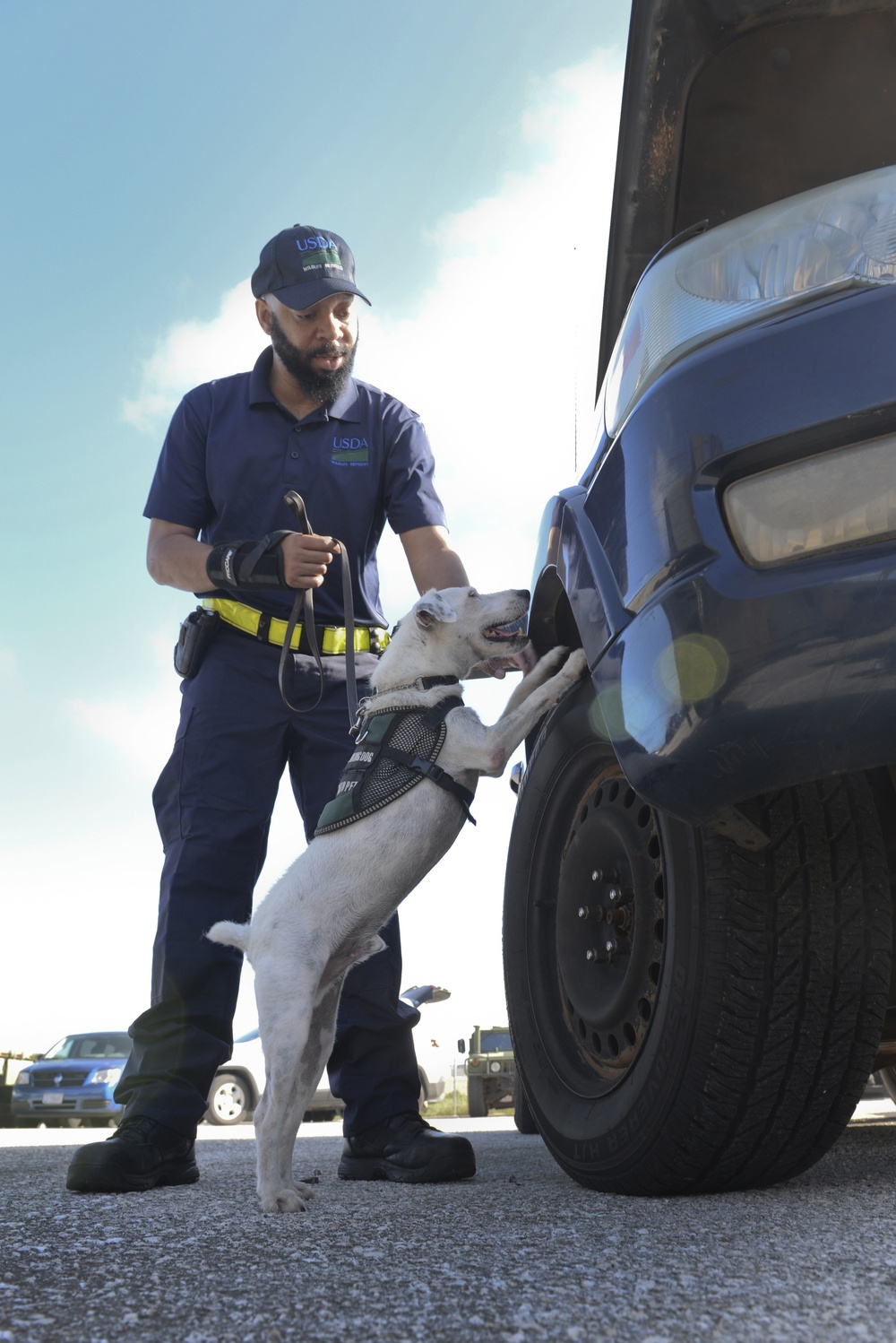 USDA dogs sniff out snakes