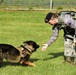 Stepping stones: An Airman's path to K-9 career