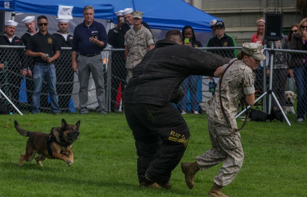 Man's best friend demonstrates intelligence during San Francisco Fleet Week