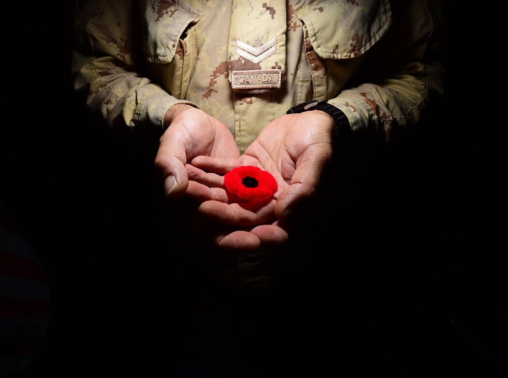 In Flanders Fields the poppies blow, between the crosses row on row