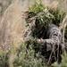 Predator and prey: Pre-Scout Sniper students stalk targets