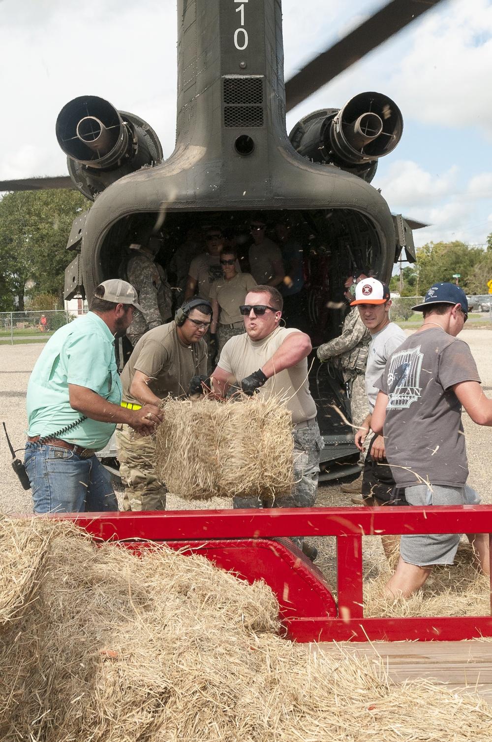 ARNG delivers hay to landlocked livestock