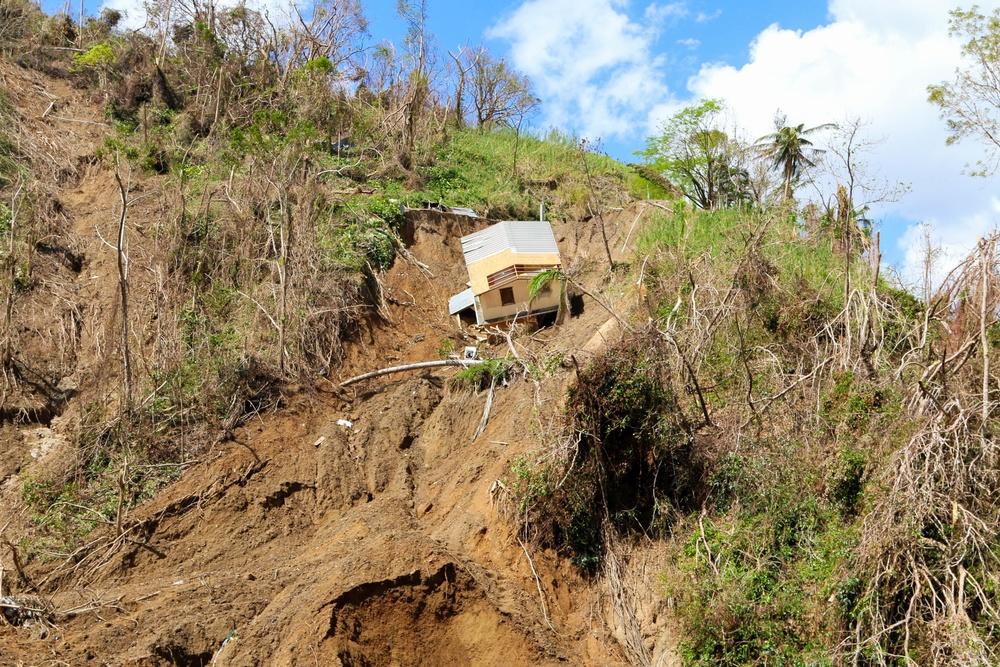 Corozal Road Clearance
