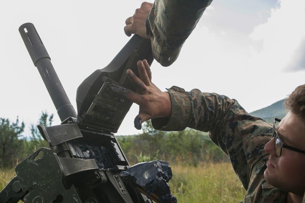 Hailstorm of 40mm Grenades: Bulgaria DFT Grenade Launcher Live Fire