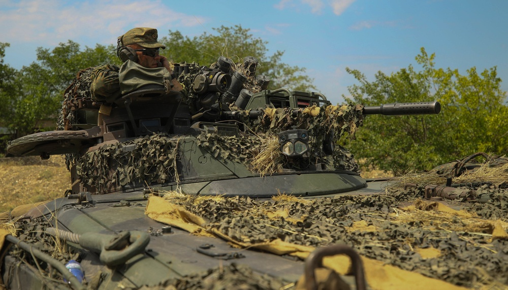German army shows solidarity during Noble Partner 18