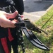 Airman/Pirate saves bird at Fort Meade