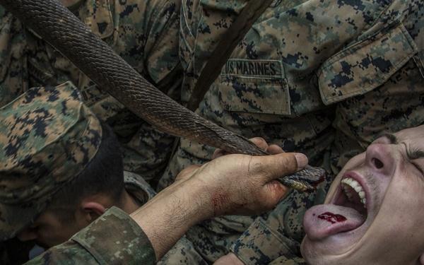Cobra Gold 19: U.S. and Royal Thai Marines get a taste for jungle survival training