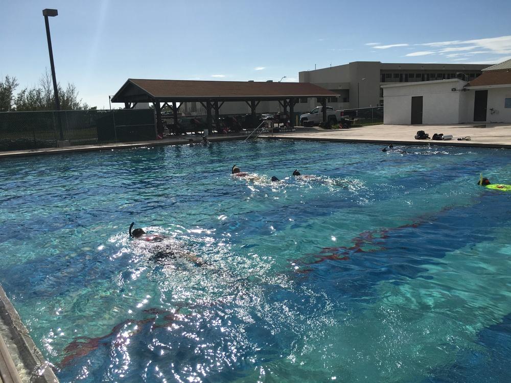 Swim Eval