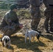 TACP Airmen wrangle, pack and ride during specialized training