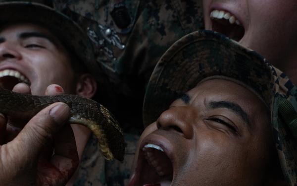 Cobra Gold 20: Royal Thai, US Marines participate in jungle survival training