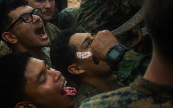Cobra Gold 20: 31st Meu Marines, Royal Thai Marines conduct bilateral jungle survival training