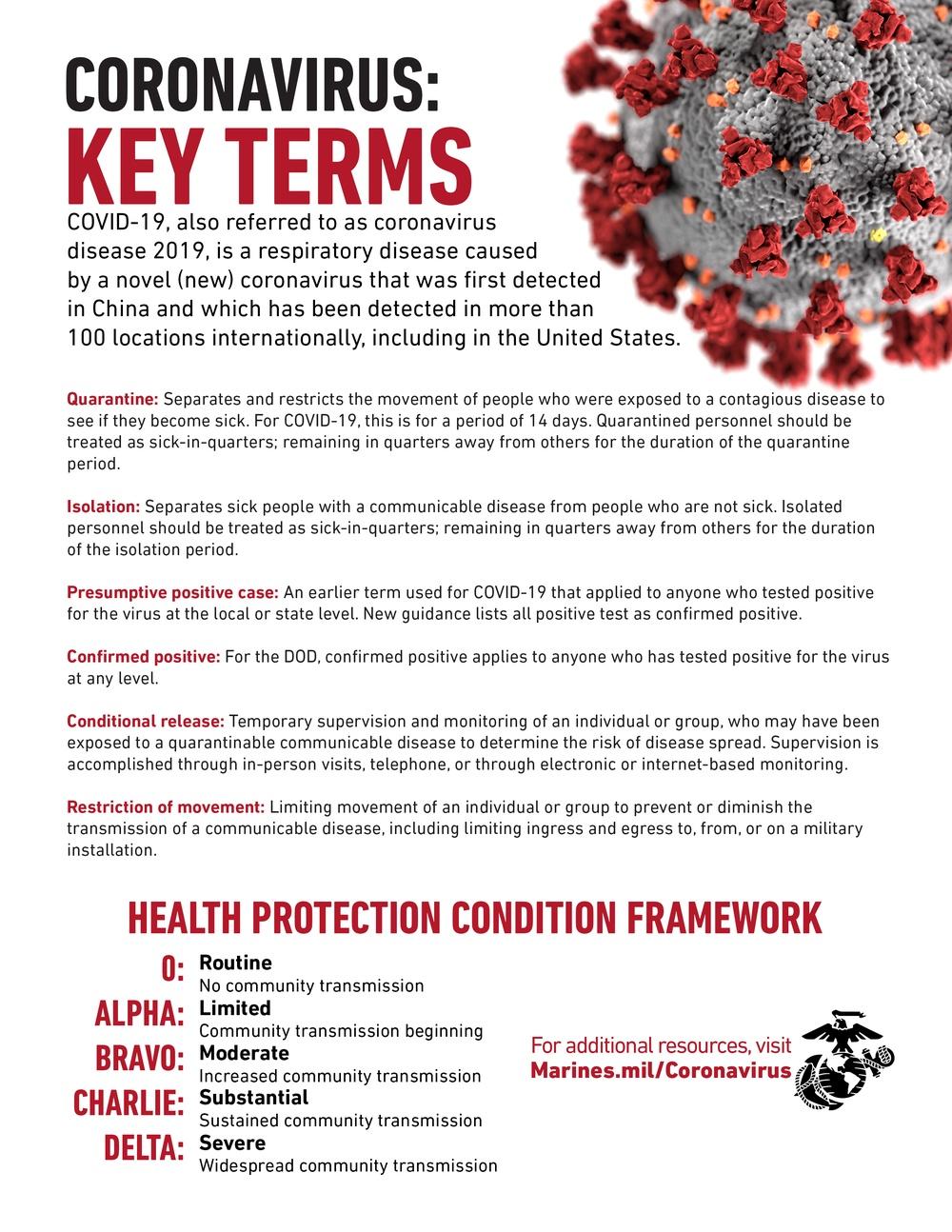 Coronavirus key terms