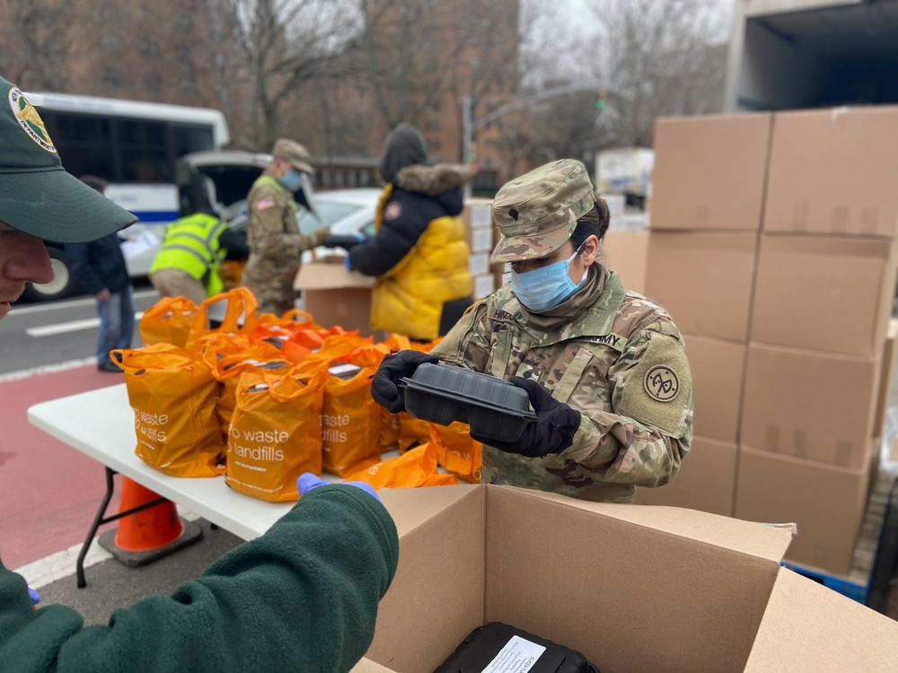 NY National Guard responds for Operation COVID-19 across New York City