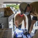 CTF 75 Sailors Deliver Food to USS Theodore Roosevelt Sailors in Quarantine