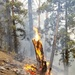 U.S. Army firefighters assist local departments during 2020 California wildfire season