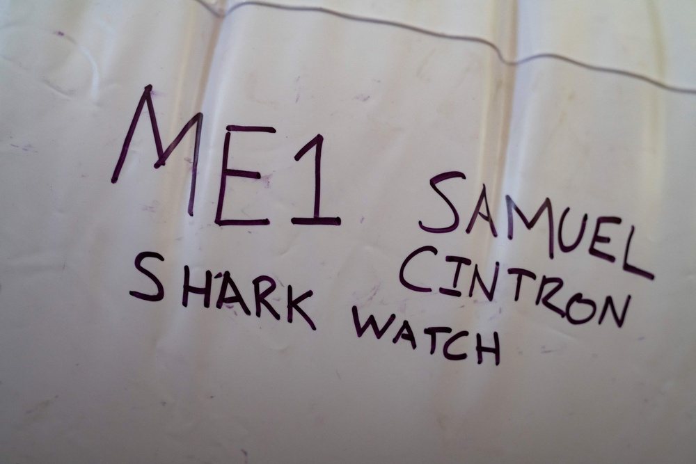 Kimball shark attack unicorn float