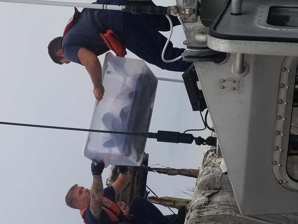 Coast Guard members, wildlife specialists help rescue injured pelican
