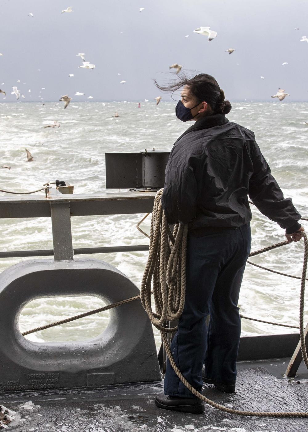 Sea N Anchor