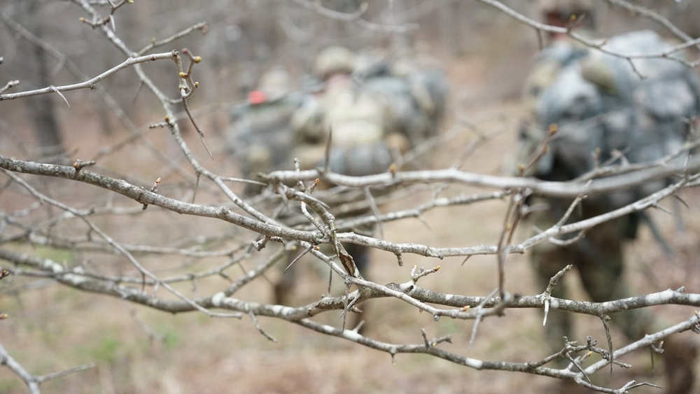 1-109th Infantry Regiment conducts aerial movement