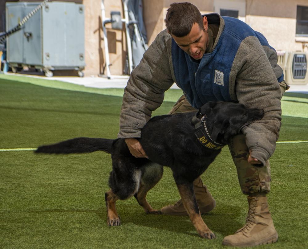 Nellis Defenders ramp up training