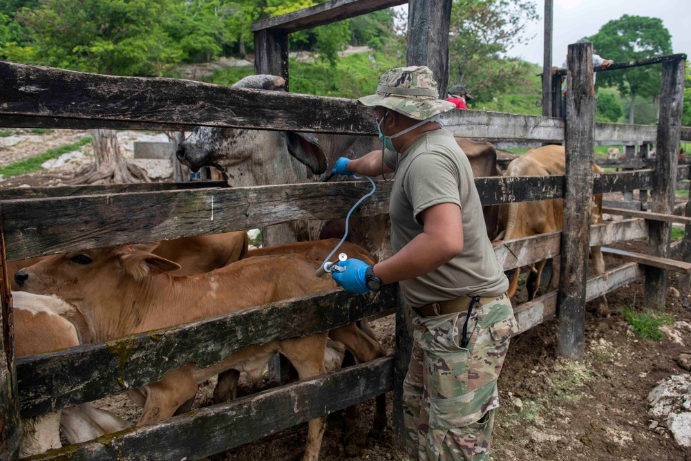 U.S. military veterinary professionals join RS-21 mission