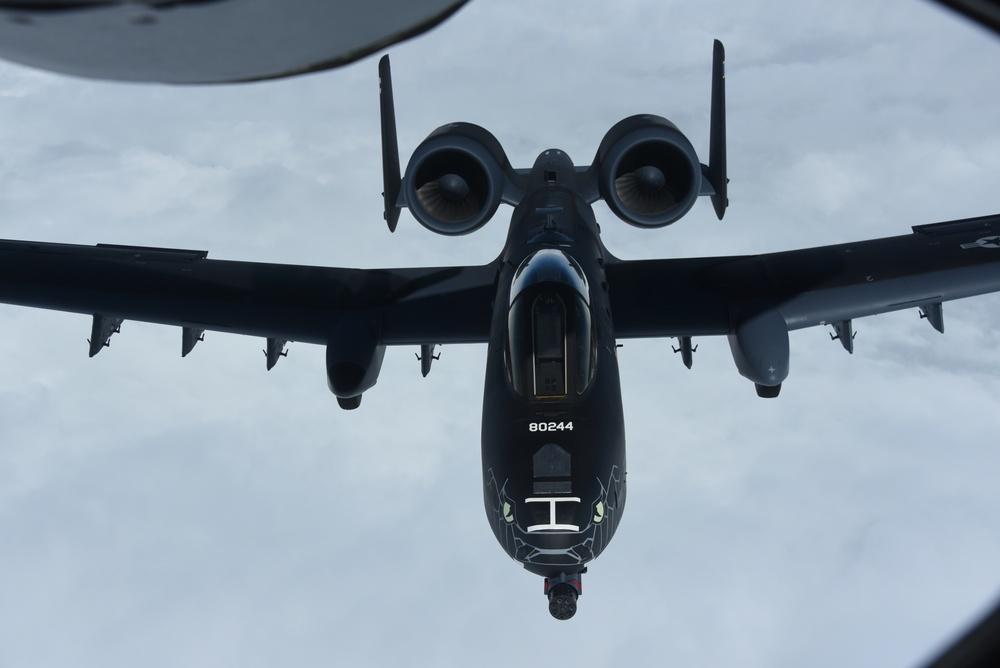 Stealthy Blacksnake A-10