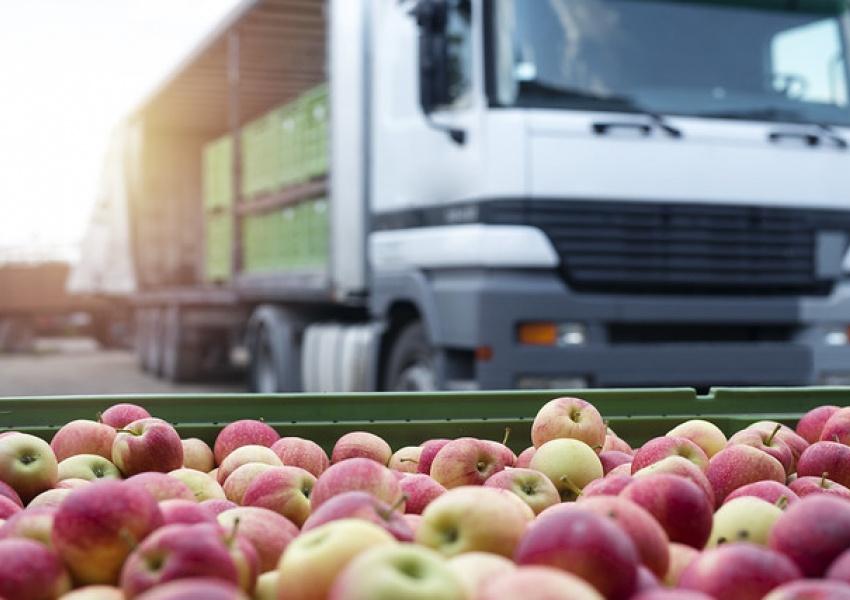 DLA Troop Support provides fresh fruits, vegetables for record-breaking USDA summer program