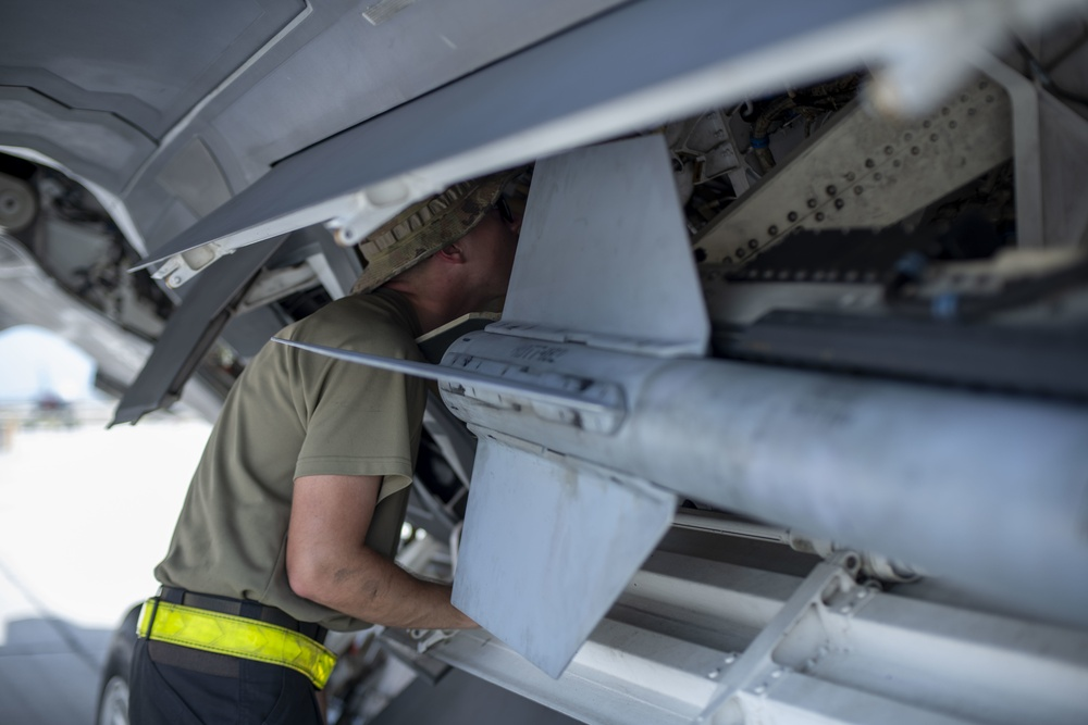 Taming a Raptor; an F-22 crew chief's mission