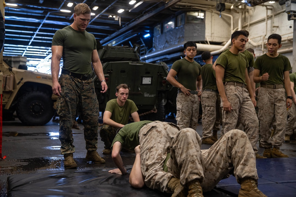 MCMAP with the 31st MEU