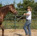 To Train a Mustang; Fulfilling A Childhood Passion