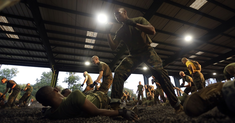 RS Lansing recruit completes martial arts training at Parris Island