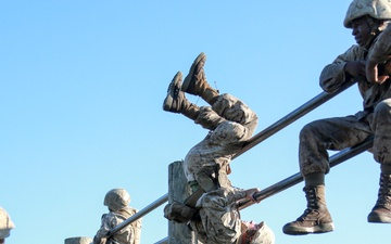 Recruits with Bravo Company complete the Crucible [Image 8 of 8]